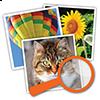 4-bilder-1-wort-grossaufnahme-loesung-aller-level-und-ebenen-nebo-apps-100