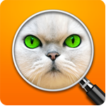 Errate-das-Bild-Wortspiel-Loesung-aller-Level-iPhone-iPad