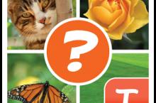 4 Bilder Rätsel für Tango Lösung alle Ebenen