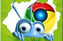 Google Chrome: Texte werden nicht angezeigt / nicht sichtbar – WordPress