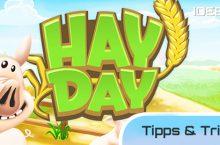 Hay Day Tipps und Tricks – Anleitung iPhone, iPad, iPod App