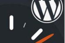 WordPress will GZ Datei herunterladen dank WP-Super Cache Plugin